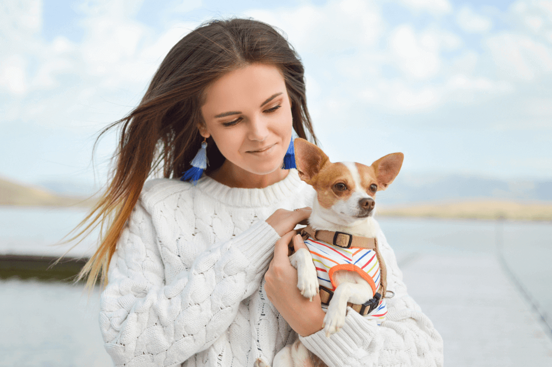 7 Tips for Mastering Travel Therapy with Pets